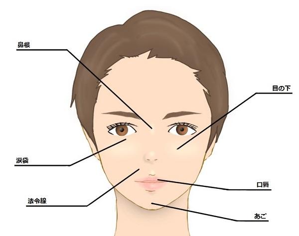ヒアルロン酸の適応部位